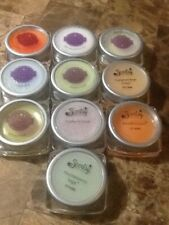 scentsy large samplers new 10 scents smells great