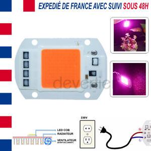 LED COB 50W SPECTRE COMPLET ALIM DIRECT 220V DRIVER INTEGRE CROISSANCE PLANTES