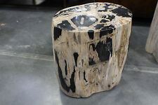 "18"" H Petrified Wood Stool Black White One of a Kind SLC UT Furniture Sale Event"