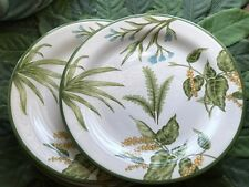 "Set of 4 Maxcera Palm and Fern Dessert Salad Plates 8"" New!"