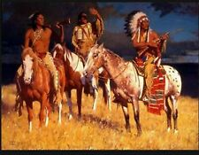 Storm over the Plains Native American A Quilt Top Wall Hanging Panel Fabric