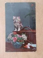 VINTAGE CAT POSTCARD - JUST ARRIVED - LITTLE KITTEN ON BASKET