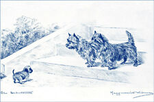 Cairn Terrier Dogs w Puppy 1925 Marguerite Kirmse ~ Large New Blank Note Cards