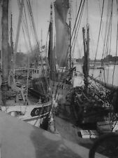 PHOTO VINTAGE : CHALOUPES SARDINIERES PORT CONCARNEAU vers 1940