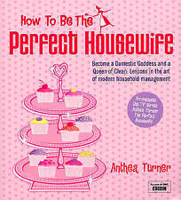 How To Be The Perfect Housewife: Lessons in the art of modern household managem
