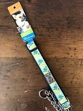 RC Pet Products Martingale Style Training Collar XL Teal Pineapple