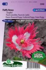 Ein- & Zweijährige Pflanzen-Samen Blühende Papaver