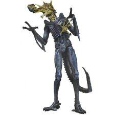 "NECA Aliens Series 12 Battle Damaged Blue Warrior Alien 9"" Action Figure - 23cm"