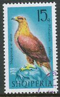 ALBANIEN 1966 Greifvögel 15 Q Seeadler (Haliaeetus albicilla), gestempelt