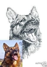 Auftragsmalerei 001DIN A4 / Pastellzeichnung / Tierbild / Tierportrait
