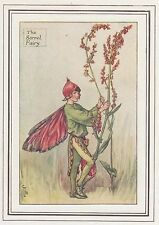 CICELY MARY BARKER c1930 THE SORREL FAIRY Painting Vintage Art Book Print
