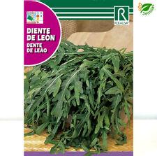 Diente de León ( Taraxacum officinale ) 0,5 gr / 1.000 semillas apróx  - de Leon
