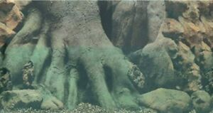 """Vivarium / Aquarium TREE TRUNK 24"""" Tall Background Plastic Poster Picture Image"""