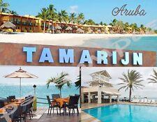 ARUBA - TAMARIJN - Travel Souvenir Flexible Fridge MAGNET