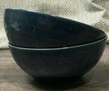 Set of 2 Threshold Kingsland Stoneware 6 .5  Soup Cereal Bowls All Blue Embossed