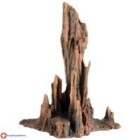 RA Petrified Wood - Large Item # AUTMT254