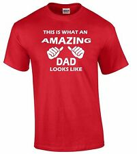 This Is What An Amazing Dad Looks Like T-SHIRT Birthday Gift Daddy Hoodie Tee