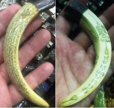 LP Sawai Pig Tooth Real Wild Boar Hog Thai Amulet Power Lucky Pendants Teeth