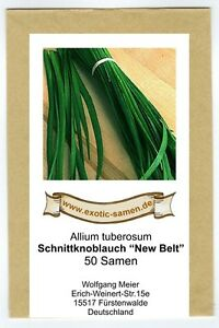 Schnittknoblauch - breitere Blätter - New Belt (50 Samen)