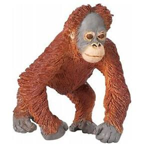 Orangutan Baby Wildlife Figure Safari Ltd NEW IN STOCK