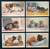 Beautiful Lot of 6~Cats in~Baskets~Shoe~Kittens Cats Antique Postcards--a590
