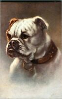 Minnie Keene portrait of a dog postcard antique colour charming cute adorable #9