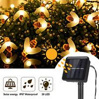 5M Solar Powered LED String Light Bee Shape Garden Path Yard Decor Lamp Outdoor
