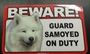 Laminated Card Stock Sign- Beware! Guard Samoyed On Duty