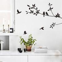 Black Branch Bird Removable Vinyl  Decal Art Mural  Decor Wall Sticker Wallpaper