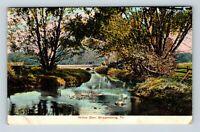 Shippensburg PA, Willow Glen, Pennsylvania, Vintage Postcard Z62