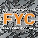 FINE YOUNG CANNIBALS 12'' She Drives Me Crazy - GERMANY