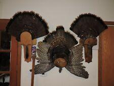 Turkey Fan Mounts Taxidermy Tom Jake Whitetail Deer Shed Antler Log Cabin Decor