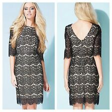 Darling @ Kaleidoscope Sz 14 Black Cropped Sleeve Lace DRESS Occasion Races £85