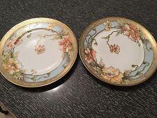 Two Noritake Nippon Royal Crockery Hand Painted Plates