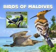 Maldives - 2019 Birds of Maldives - Stamp Souvenir Sheet - MLD190603b