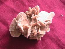 desert rose fossil rock