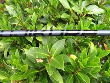 Fujikura Cobra stiff driver shaft pro 60 43.5 inch With adaptor