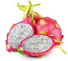 Dragon Fruit Pitaya Pitahaya Seeds 50 PCS ORGANIC FRESH!