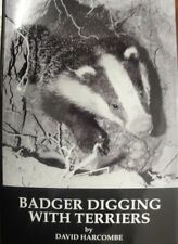 Badger Digging With Terriers