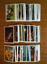 Trucards trade cards: 3 sets Veteran & Vintage Cars, Animals, Flowers