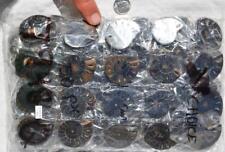 7948q LOT of FIFTY50 RARE 1in100 BLACK Ammonite PAIR Crystal FOSSIL MEDIUM 3-4cm