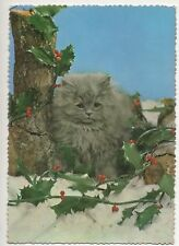 Cpa Carte postale animalier Chat Chaton Persan