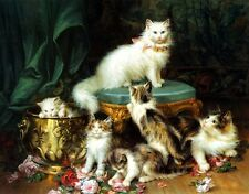 HD Print On Canvas Cat Oil Painting Picture Modern Art Home Decor PD005