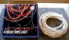 Chasing ropelights Party Package - 49 feet overall