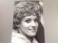 KARIN PETERSEN - Photo de presse originale 13x18cm