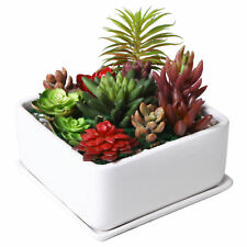 7 inch Square Ceramic Succulent Planter Pot with Drainage Tray & Saucer, White