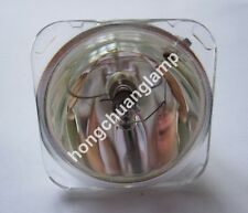 FOR PLANAR PD4010 PD7010 PD7060 DLP Projector Replacement Lamp Bulb 997-3443-00