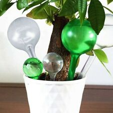 6x Watering Globes Plant Flower Waterer Automatic Self Watering Bulbs Ball - Uk