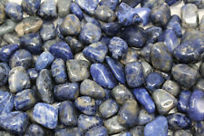 1 lb Bulk lot Sodalite Tumbled  : Crystal Healing Reiki Gemstone Quartz
