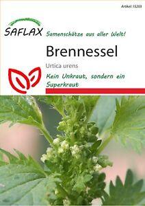 Saflax 15203 Brennessel (Brennesselsamen)